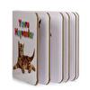 Küçük Kitaplar- Yavru Hayvanlar