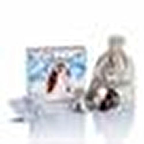 Koruyucu Gümüş Göğüs Kapakları