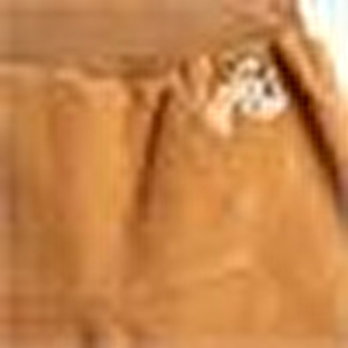 Baby Dino Velvet Rib Single Pant
