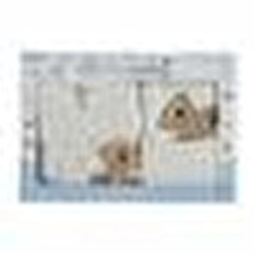 Bebek Bornoz Seti Krem