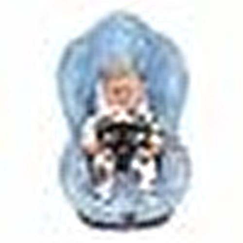 Bebek Oto Koltuğu ve Puset Kemer Klipsi