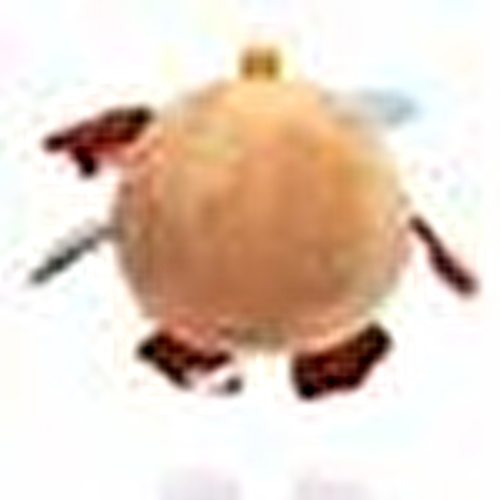 My Rattle Dog Ball