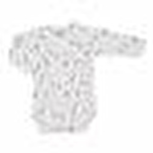 Winter Baby Girl Organic Flower Snaps Bodysuits