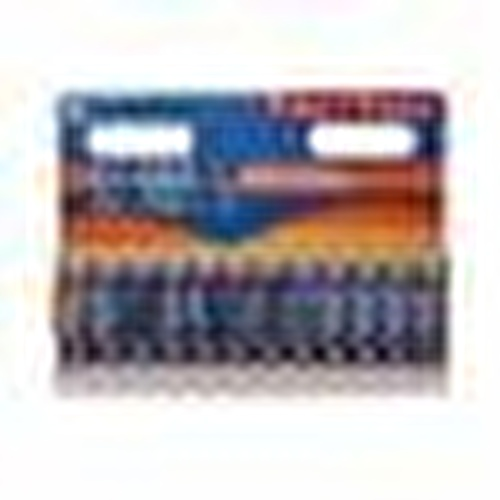 Ultra Premium Alkalin AA Boy Pil 9+3