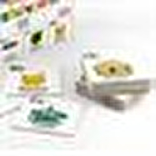 Learning English Educational Play Cards 52 pcs 3 Years+