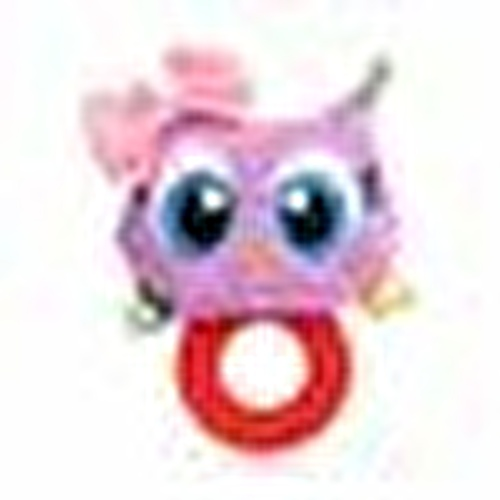 My Rattle Mouthguard Owl