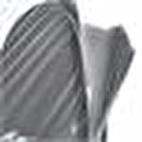 Ana Kucağı Sinekliği Siyah