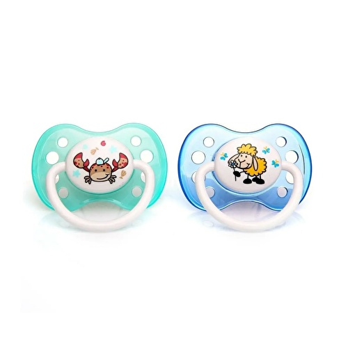 Silicone Soothers 2 pcs 5-18 Months