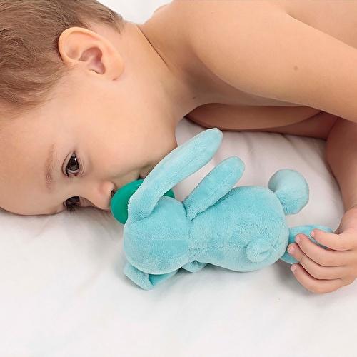 Sleeping Friend Blue Rabbit