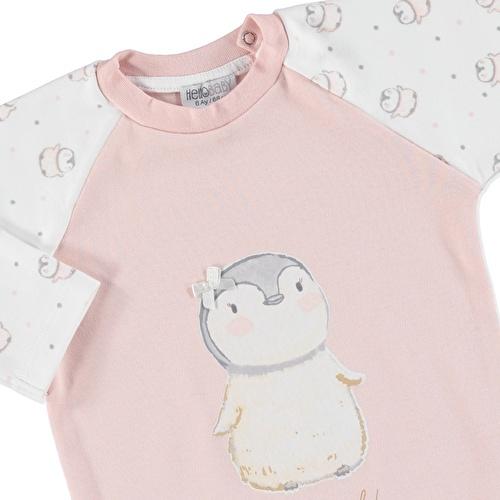 Kış Kız Bebek Bebek Penguen Tema Şapka Tulum 2li Takım