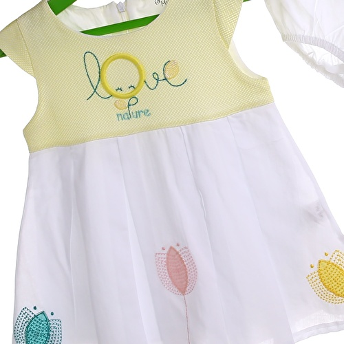 Love Baby Girl Embroidered Dress with Panty