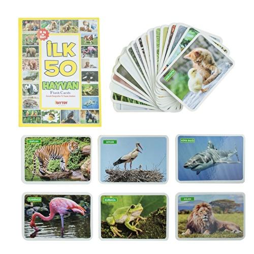 Yaşam Alanlarında İlk 50 Hayvan Bebek Eğitici Oyuncak Flash Cards
