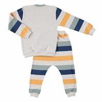 Lion Baby Sweatshirt Pant Set 2pcs