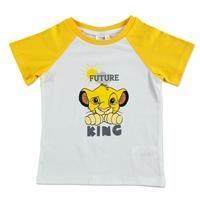 Summer Baby Boy Lionking
