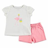Summer Baby Girl Flamingo T-shirt Short 2 pcs Set