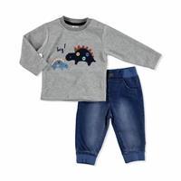 Baby Dino Sweatshirt Pant Set