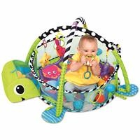 BP4814 Activity Gym Play Mat with Ball Pool