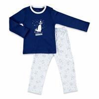 Polar Adventure Baby Pyjamas Set