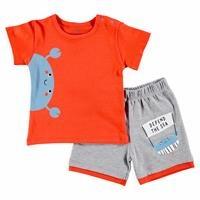 Erkek Bebek Eğlenceli Yaz Tshirt Şort 2li Takım