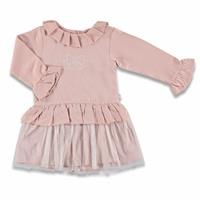 Tulle Detail Embroidered Baby Girl Dress