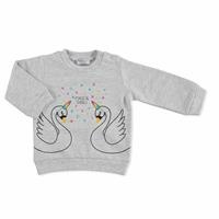 Basic Baby Printed Sweatshirt