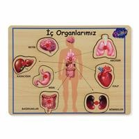 Wooden Handle Educational Puzzle Sensory Organs 2