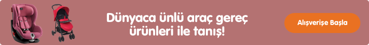 arac-gerec